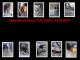 Remodelaciones-al-2305-2081-y-7399-6618-Techos-ceramica-soldadura