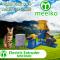 Extrusora-para-pellets-alimentacion-gatos-120-150kg/h-15kW