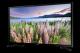 TV-SAMSUNG-48-PRECIO:-3000-bs-muy-poco